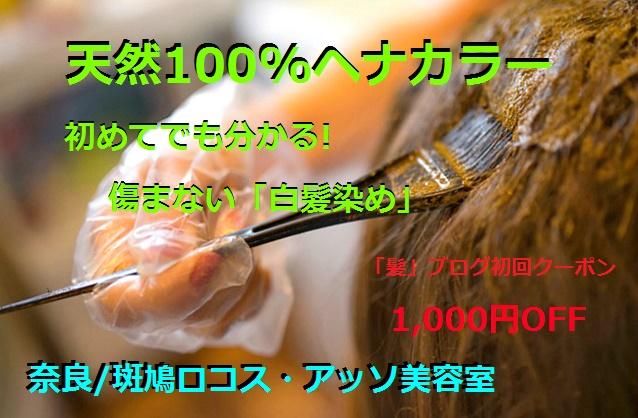 奈良県の天然ヘナカラーの初回クーポン