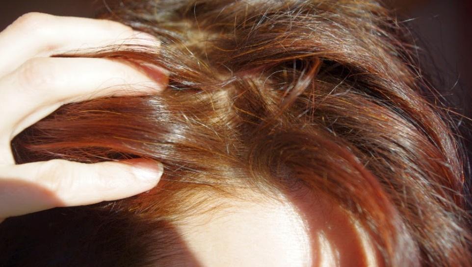 黒髪のヘナカラーの染まり方