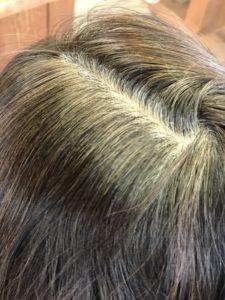 過去の白髪染めの色も退色しています